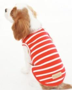 amylovespet PET CLOTHING 581844