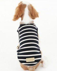 amylovespet PET CLOTHING 581846