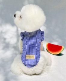 amylovespet PET CLOTHING 585613