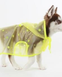 amylovespet PET CLOTHING 585626