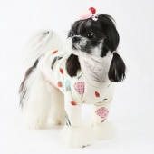 amylovespet PET CLOTHING 587793
