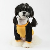 amylovespet PET CLOTHING 587796