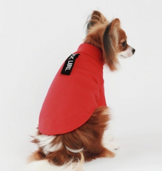 amylovespet PET CLOTHING 588431