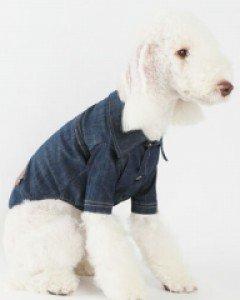 amylovespet PET CLOTHING 589950