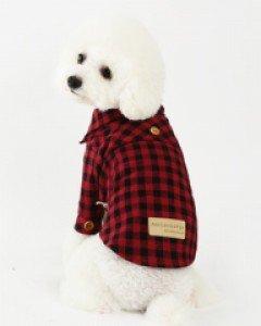 amylovespet PET CLOTHING 589953