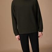 danswer shortsleeved shirt 1300306