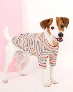 itsdog PET CLOTHING 713151
